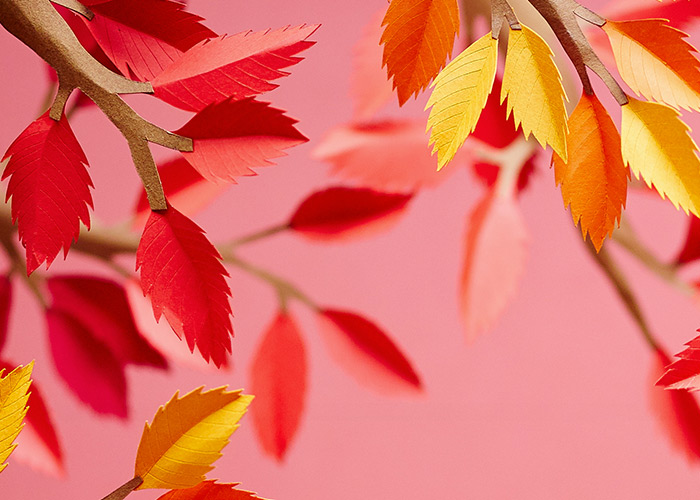 Spara på höstens hetaste mode!