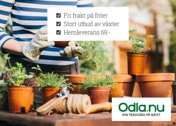 Din trädgård på nätet!